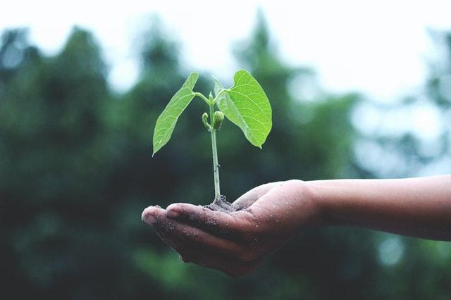 Zakelijke financiering voor groei